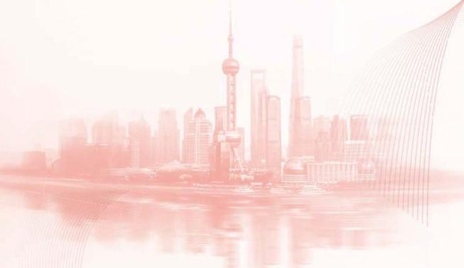 """心系民生热点 关注城市安全聚焦2019年上海""""两会""""中的安全话题"""