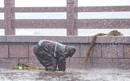 国家防总从容应对台风Ⅱ级应急响应
