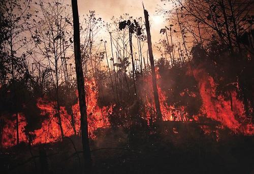 毁灭还是救赎?——亚马孙雨林火灾揭露巴西政府经济难题